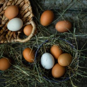 Яйцо отборное домашнее